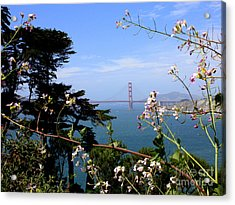 Golden Gate Bridge And Wildflowers Acrylic Print by Carol Groenen