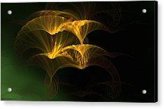 Acrylic Print featuring the digital art Golden Geisha by Linda Whiteside