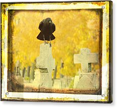 Golden Gothic Acrylic Print by Gothicrow Images