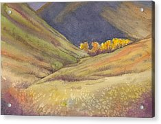 Golden Grove Acrylic Print
