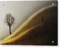 Golden Hills Acrylic Print by Helge Andersen