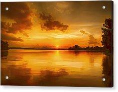 Golden Honey Sunset Acrylic Print by Dan Holland