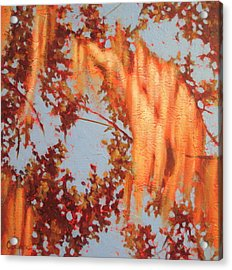 Golden Hour 3 Acrylic Print by Carlynne Hershberger