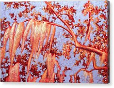 Golden Hour 7 Acrylic Print by Carlynne Hershberger