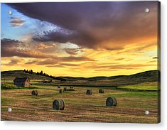 Golden Hour Farm Acrylic Print by Mark Kiver