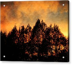 Golden Hours Acrylic Print