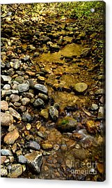 Golden Klo Creek Acrylic Print by Phil Dionne