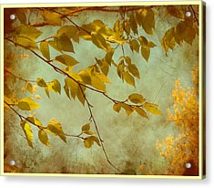 Golden Leaves-2 Acrylic Print by Nina Bradica