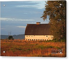 Golden Light At Nisqually Wildlife Refuge Acrylic Print