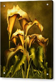 Golden Lilies By Night Acrylic Print by Georgiana Romanovna