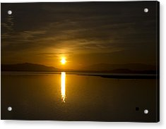 Acrylic Print featuring the photograph Golden Morn by Richard Stephen