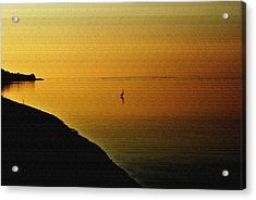 Golden Morning Acrylic Print by Michele Kaiser