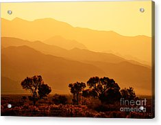 Golden Mountain Light Acrylic Print