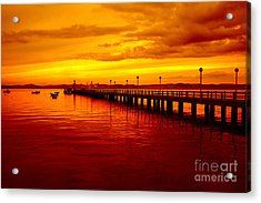 Golden Nature Acrylic Print by Boon Mee