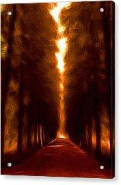 Golden October Acrylic Print by Steve K