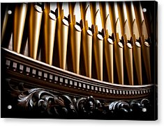 Golden Organ Pipes Acrylic Print