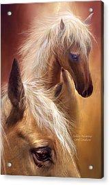 Golden Palomino Acrylic Print by Carol Cavalaris