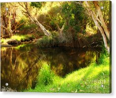 Golden Pond Acrylic Print by Michelle Wrighton