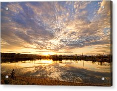Golden Ponds Scenic Sunset Reflections Acrylic Print by James BO  Insogna