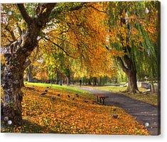Golden Public Garden Acrylic Print