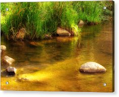 Golden Reflections Acrylic Print by Michelle Wrighton