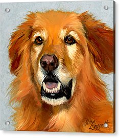 Golden Retriever Dog Acrylic Print