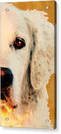 Acrylic Print featuring the painting Golden Retriever Half Face By Sharon Cummings by Sharon Cummings