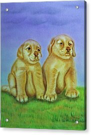 Acrylic Print featuring the painting Golden Retriever by Thomas J Herring