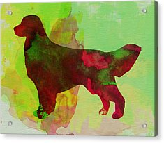 Golden Retriever Watercolor Acrylic Print by Naxart Studio