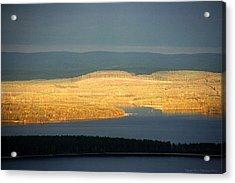 Golden Shores Acrylic Print by Leena Pekkalainen