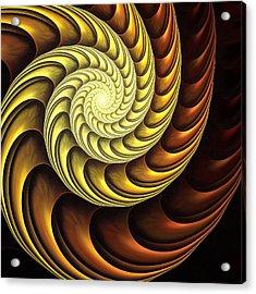 Golden Spiral Acrylic Print by Anastasiya Malakhova