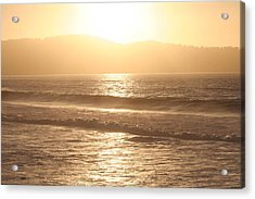 Golden State  Acrylic Print by Carrie Maurer