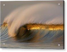 Golden Stripe Mg_9094 Acrylic Print by David Orias