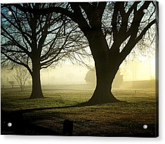 Golden Sunrise Acrylic Print by Greg Simmons