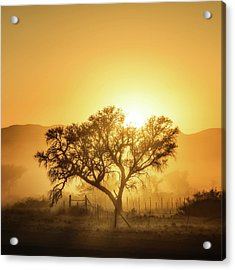 Golden Sunrise Acrylic Print by Piet Flour