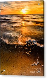 Golden Sunset Acrylic Print by Adrian Evans