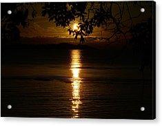 Golden Sunset Acrylic Print by David Berner