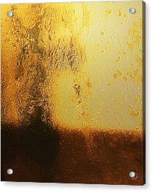 Golden Tree Acrylic Print by Gun Legler