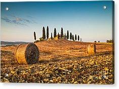 Golden Tuscany 2.0 Acrylic Print