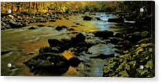 Golden View Of The Little River In Autumn Acrylic Print by Dan Sproul