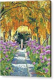 Golden Walk Acrylic Print by David Lloyd Glover