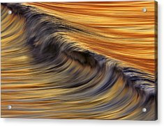 Acrylic Print featuring the photograph Golden Wave  C6j7800 by David Orias