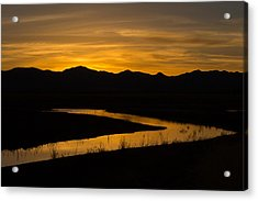 Golden Wetland Sunset Acrylic Print
