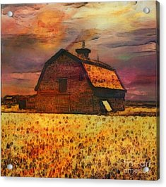 Golden Wheat Sunset Barn Acrylic Print