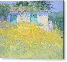 Golden Wildflowers Greece Acrylic Print by Jackie Simmonds