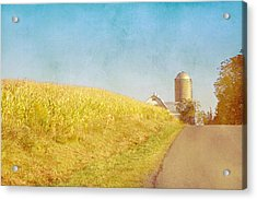 Golden Yellow Cornfield And Barn With Blue Sky Acrylic Print