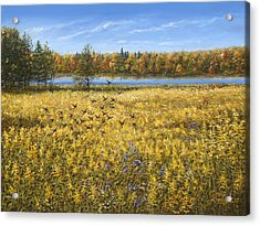 Goldenrod Acrylic Print by Doug Kreuger