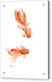 Goldfish Art Print Watercolor Painting Acrylic Print by Joanna Szmerdt