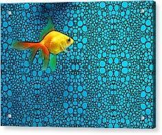 Goldfish Study 3 - Stone Rock'd Art By Sharon Cummings Acrylic Print by Sharon Cummings