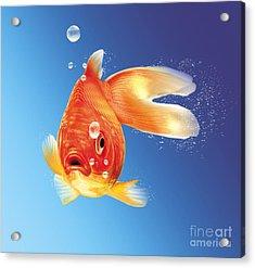 Goldfish With Water Bubbles Acrylic Print by Leonello Calvetti